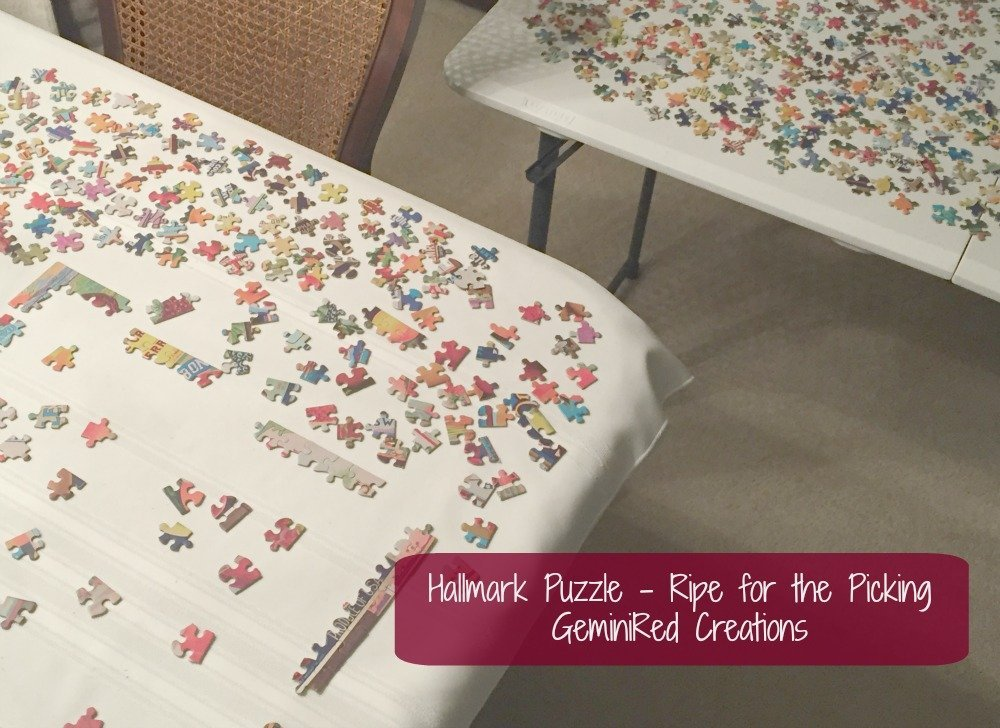 Hallmark Puzzle Ripe for the Picking (4)
