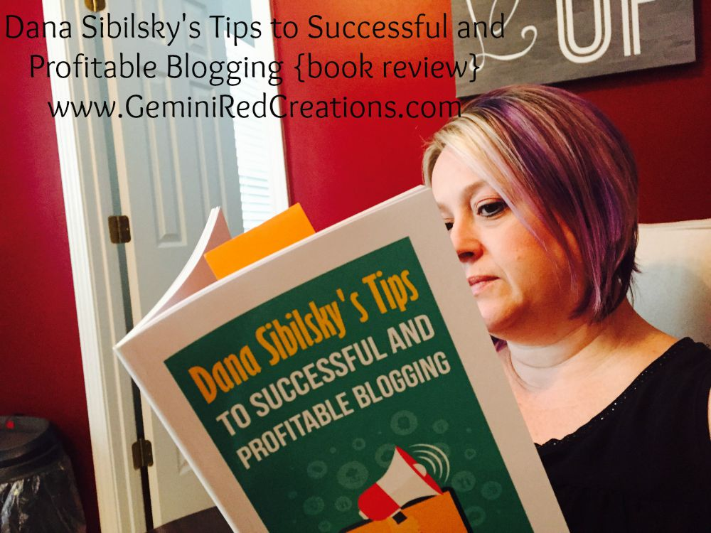 Dana Sibilsky's Tips to Successful and Profitable Blogging {book review}