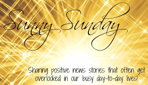 Sunny Sunday blog header